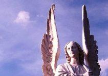 Photo of 11 signes et symboles qu'un ange veille sur vous