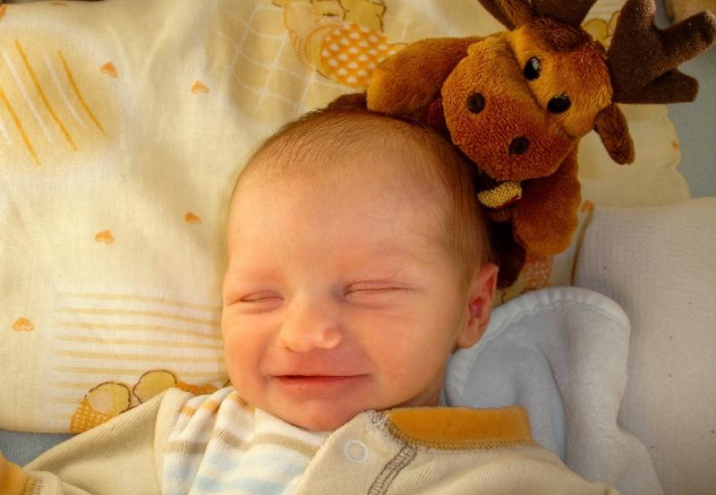 Carrières pour les bébés voyants
